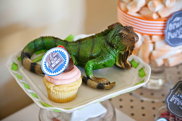 Reptile shows perfect or any birthday party Picture